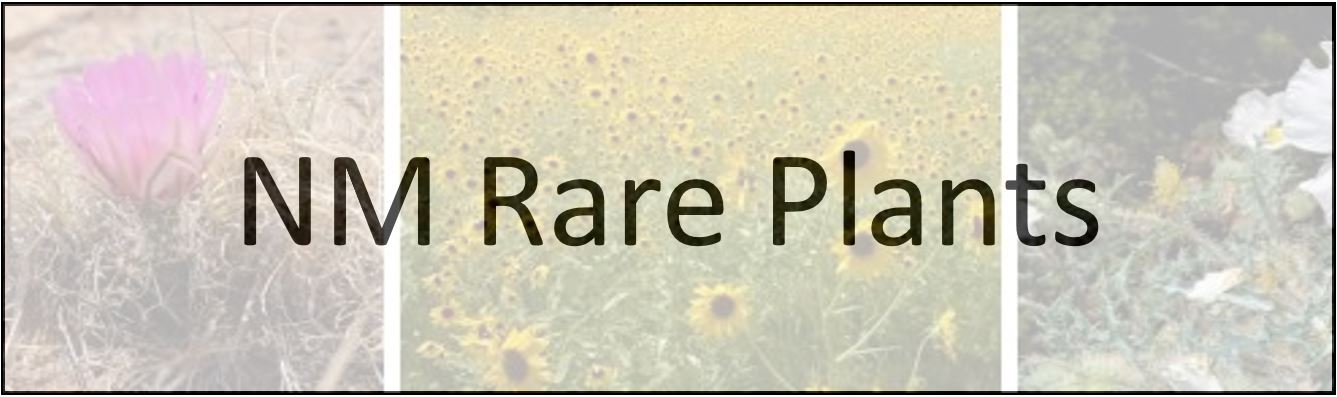 New Mexico Rare Plants Website