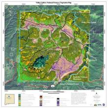 NHNM Vegetation Map